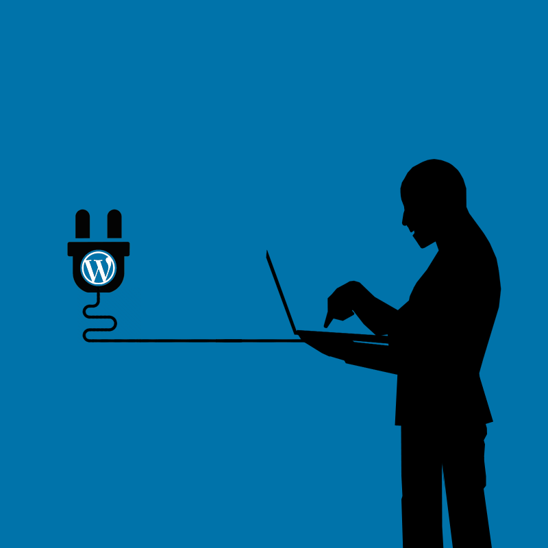 WordPress plugin hack